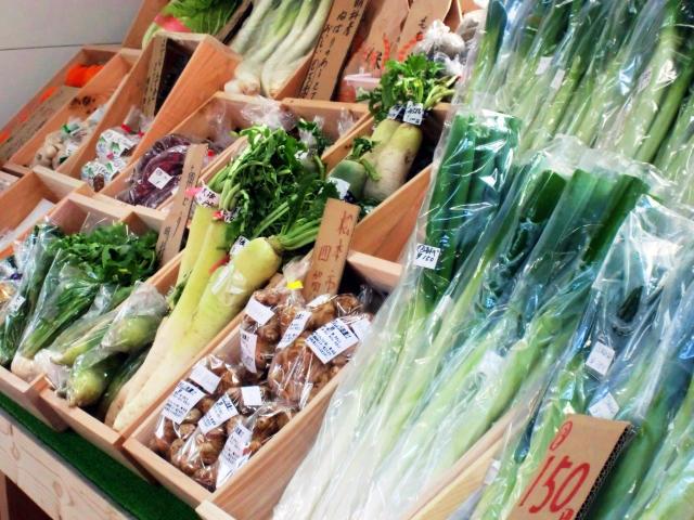 「食と生活」のマンスリー・ニュースレター<br>代替野菜はもやし・豆苗・加工品 価格高騰が生んだ新たな需要